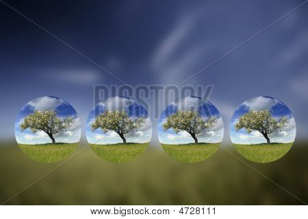 Summer Landscape With Small Globes Inside - Environment Concept