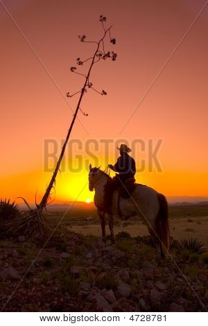 A silhouetted cowboy riding his horse at sunset poster