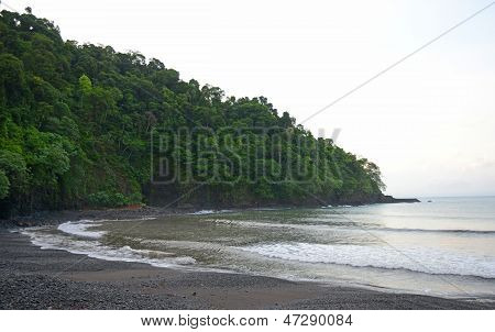 Beautiful Tropical Landscape In Panama With Trees And Water