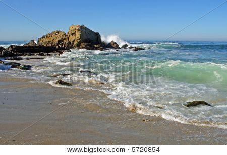Beach Cove and Ocean