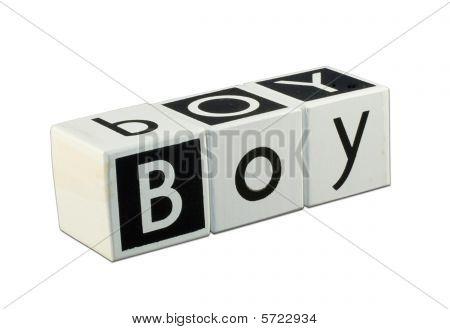 Children's Blocks - Word Boy