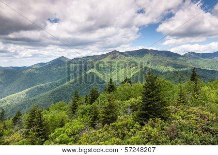 Blue Ridge Mountain Summer Landscape Scenic