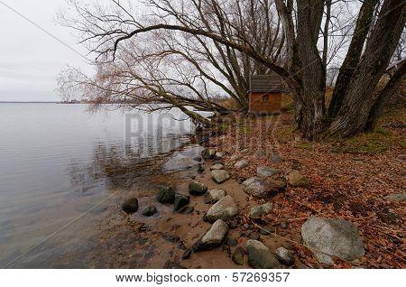Shore Of Seliger Lake Near Ostashkov