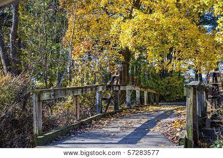 Fall Foot Bridge
