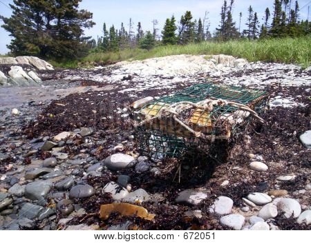 Old Lobster Trap On Beach