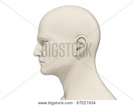 Human head side view isolated on a white background