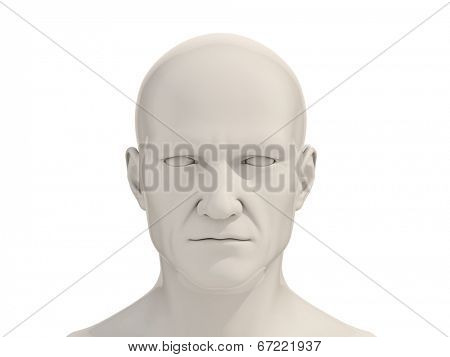 Human head frontal view isolated on a white background