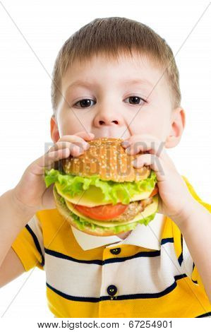 Kid boy eating delicious hamburger isolated on white poster