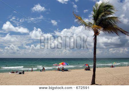 Beach In Florida