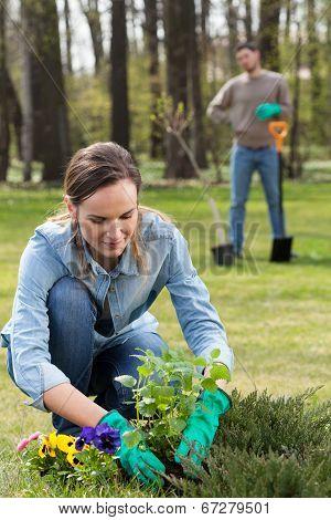 Preparing Garden For Summer