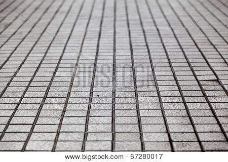 Walkway Lines