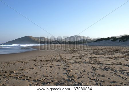 Footprints In Sand At Wild Coast, Transkei, South Africa