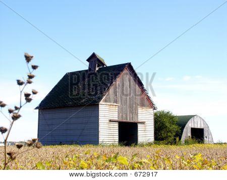 Corn Crib & Shed