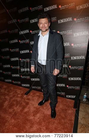 LOS ANGELES - NOV 9:  Andy Serkis at the Hamilton Behind The Camera Awards at the Wilshire Ebell Theater on November 9, 2014 in Los Angeles, CA