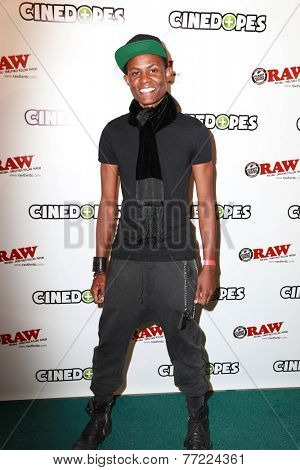 LOS ANGELES - NOV 18:  Cedric L WIlliams at the CineDopes Web Series Premiere And Launch Party at the Busby's East on November 18, 2014 in Los Angeles, CA