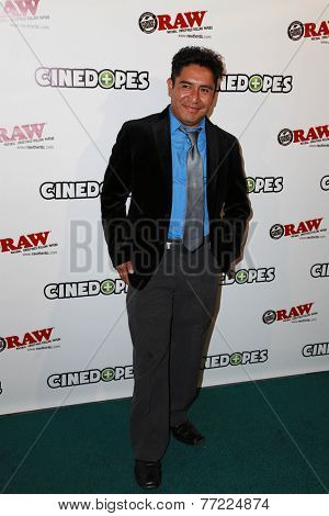 LOS ANGELES - NOV 18:  Lazaro Perez at the CineDopes Web Series Premiere And Launch Party at the Busby's East on November 18, 2014 in Los Angeles, CA