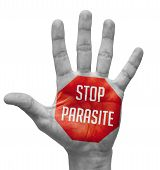 Stop Parasite Sign Painted, Open Hand Raised, Isolated on White Background. poster