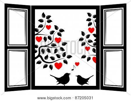 Love Birds In The Window