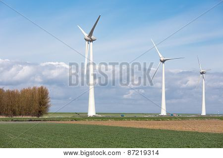 Farmland With Wind Turbines Of The Biggest Windfarm In The Netherlands