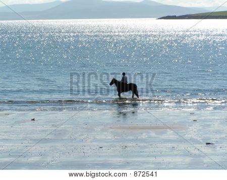 Horse Rider On The Beach Ventry Beach Ireland