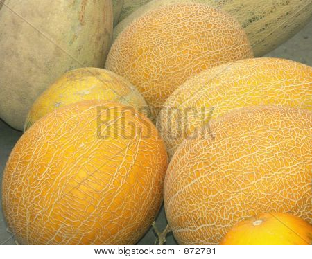 Muskmelons On A Counter