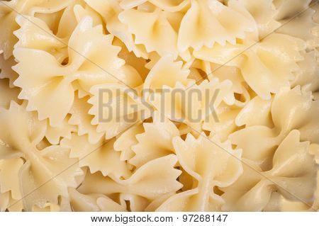 Cooked bow tie pasta noodles closeup macro