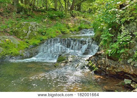 A close up of the waterfall on very small river in forest.