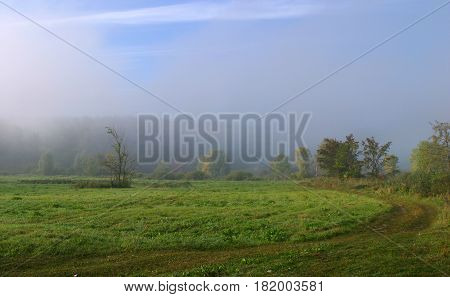 Thick Fog In The Field At Sunrise