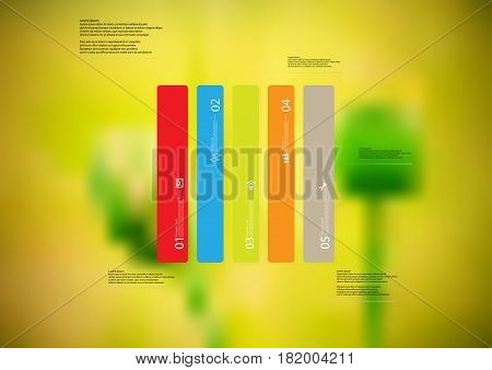Illustration infographic template with motif of rectangle vertically divided to five standalone color sections. Blurred photo with natural motif of green poppy plants is used as background.