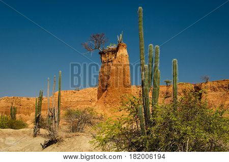 Sand Tower in Tatacoa desert the driest place of Colombia