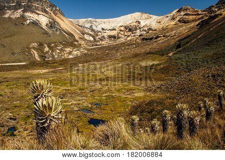 The volcano of Nevado del Quindio in Los Nevados Andes Colombia