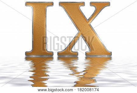 Roman Numeral Ix, Novem, 9, Nine, Reflected On The Water Surface, Isolated On  White, 3D Render