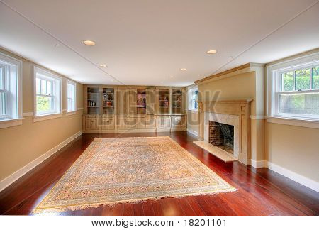 Luxury Living Room With Fireplace And Build Ins
