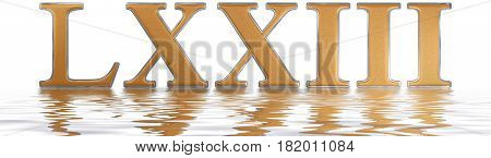 Roman Numeral Lxxiii, Tres Et Septuaginta, 73, Seventy Three, Reflected On The Water Surface, Isolat