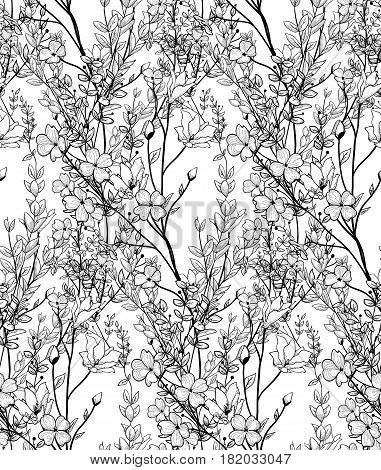 Vector Black Decorative Seamless Backdround Pattern with Drawn Flowers, Herbs, Plants, Branches. Greenery, Lush Foliage, Foliate, Doodle Style. Vector Illustration. Pattern Swatch