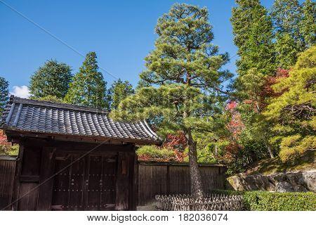 Kyoto Japan - November 27 2015 : The japan garden at Eikando temple in autumn.Eikando temple is one of the most popular tourist at Kyoto in high season ( Momiji) Kyoto Japan.