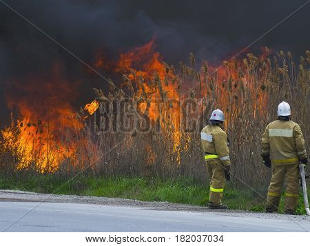 The firemen are looking at the big fire