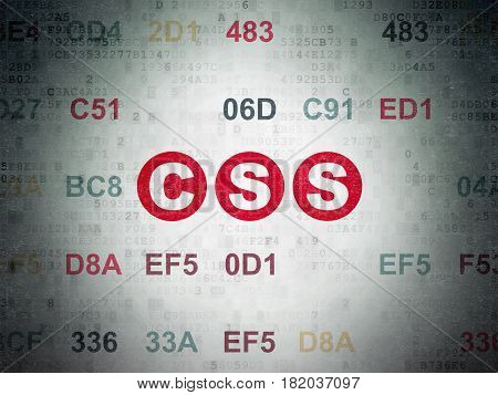 Database concept: Painted red text Css on Digital Data Paper background with Hexadecimal Code