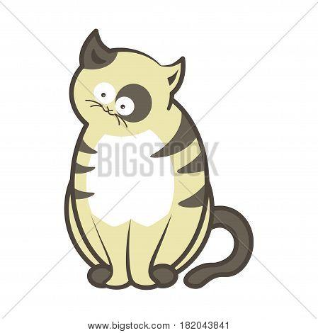Cartoon cat pet. Funny playful kitten pet sitting. Vector isolated flat icon
