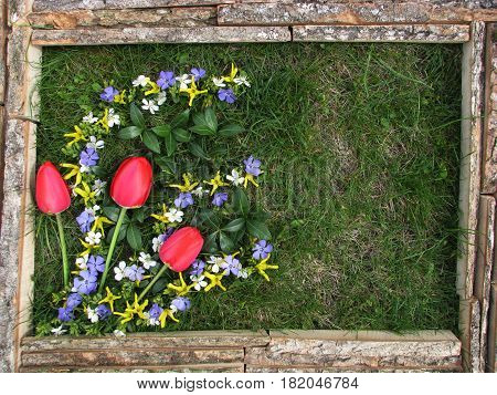 Picture Of Flowers On The Background Of Grass. Frame Made Of Unprocessed Boards