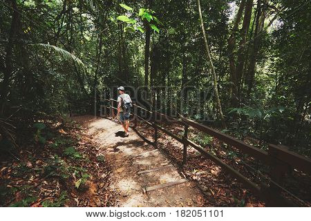 Young man walking into tropical rainforest - Island of Borneo Malaysia