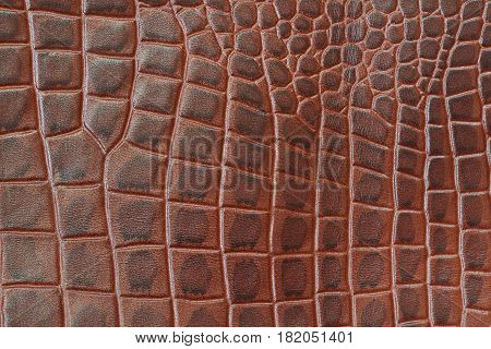 Genuine leather texture backgroundr close-up, embossed under the skin a reptile, brown color print, trend exotic background. With place for your text