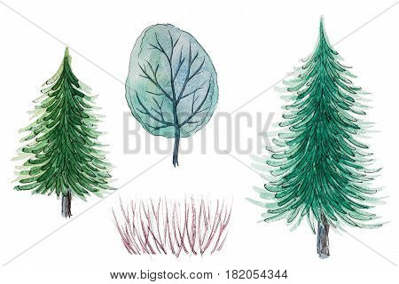 Set of hand drawn watercolor pictorial green trees and shrub, isolated on the white background for your landscape design