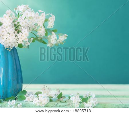 the beautiful still life with white flowers