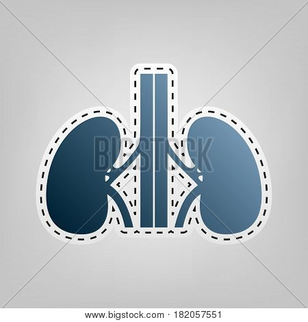 Human anatomy. Kidneys sign. Vector. Blue icon with outline for cutting out at gray background.