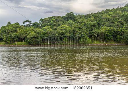 Trees In Garibaldi Lake In Encantado
