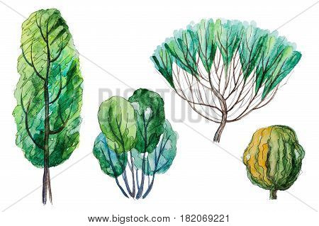 Set of hand drawn watercolor pictorial green trees and shrubs isolated on the white background for your landscape design