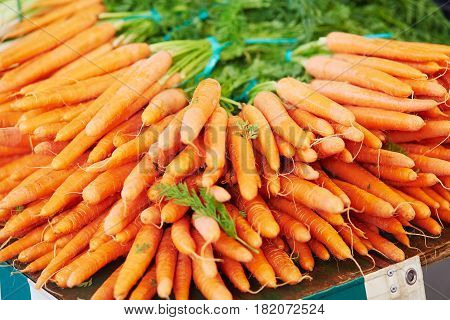 Fresh Organic Carrot On Farmers Market