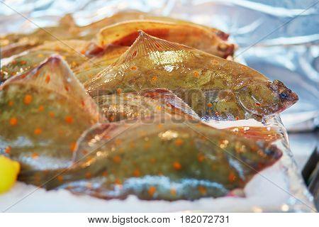 Many Soles On Fish Market