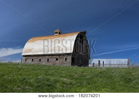 An old barn and green grass near Colfax Washington.
